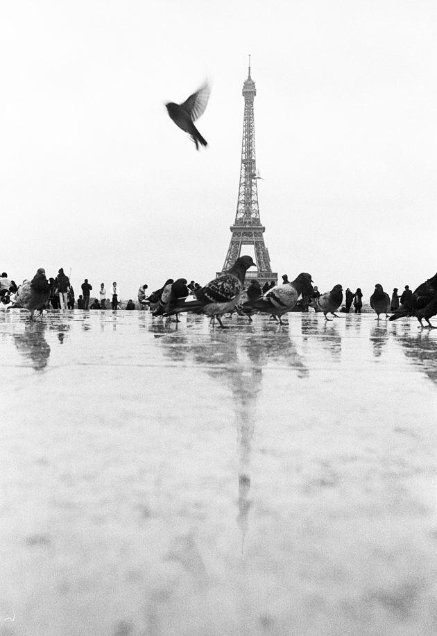 Paris /// France /// 2017